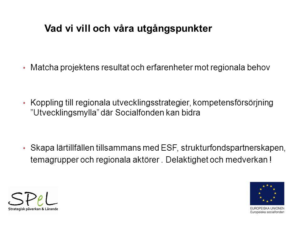 Matcha projektens resultat och erfarenheter mot regionala behov Koppling till regionala utvecklingsstrategier, kompetensförsörjning Utvecklingsmylla där Socialfonden kan bidra Skapa lärtillfällen tillsammans med ESF, strukturfondspartnerskapen, temagrupper och regionala aktörer.
