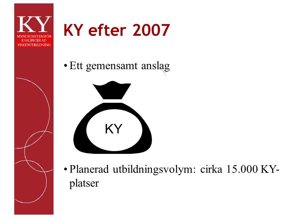 KYpu med start 2005 Fakta Formell ansökan enligt anvisningar, som finns på myndighetens webbplats Ansökningstid går ut i mitten av september 2004 Beslut under januari 2005