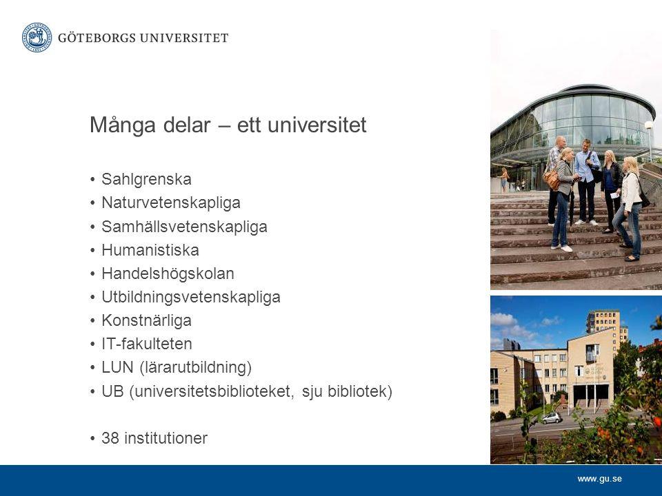 Många delar – ett universitet Sahlgrenska Naturvetenskapliga Samhällsvetenskapliga Humanistiska Handelshögskolan Utbildningsvetenskapliga Konstnärliga IT-fakulteten LUN (lärarutbildning) UB (universitetsbiblioteket, sju bibliotek) 38 institutioner