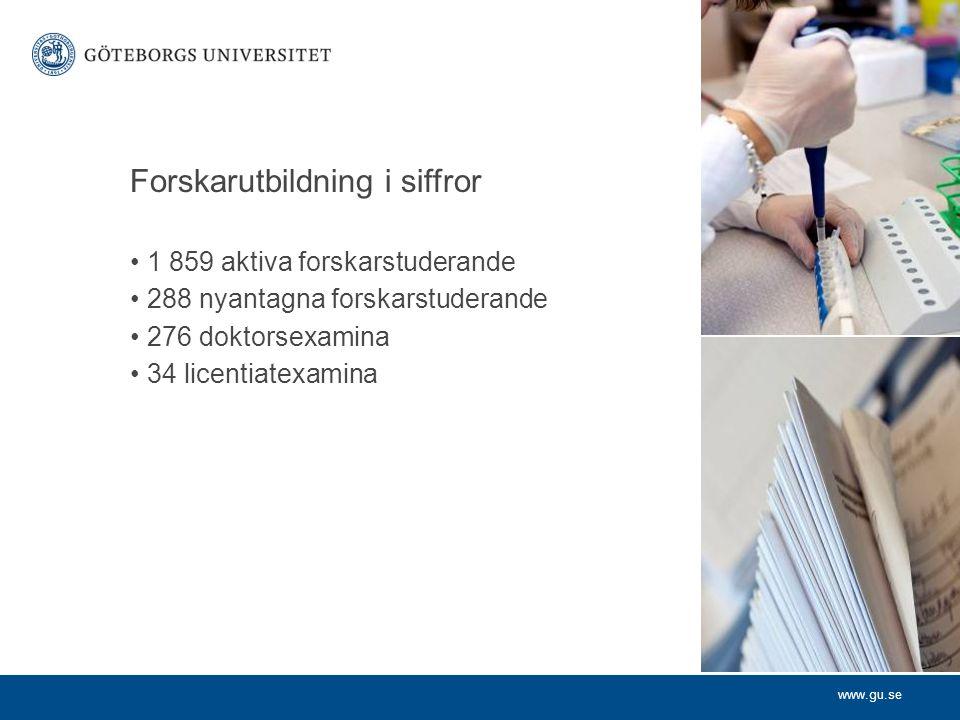 www.gu.se Forskarutbildning i siffror 1 859 aktiva forskarstuderande 288 nyantagna forskarstuderande 276 doktorsexamina 34 licentiatexamina