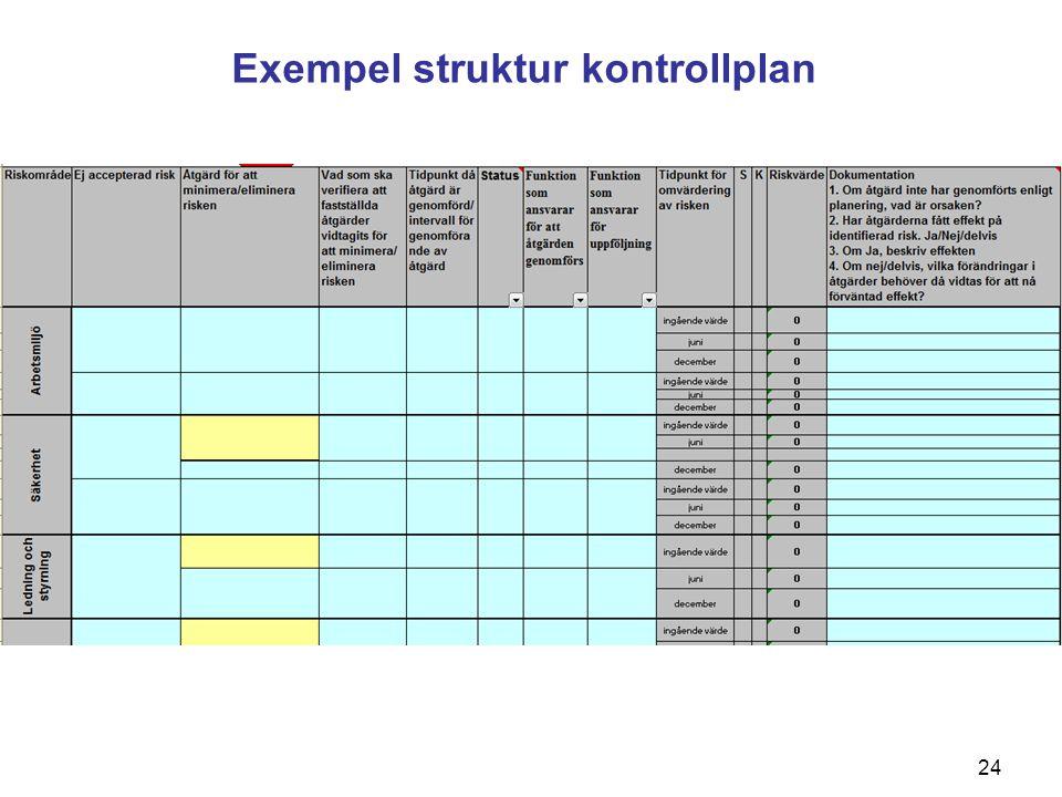 24 Exempel struktur kontrollplan