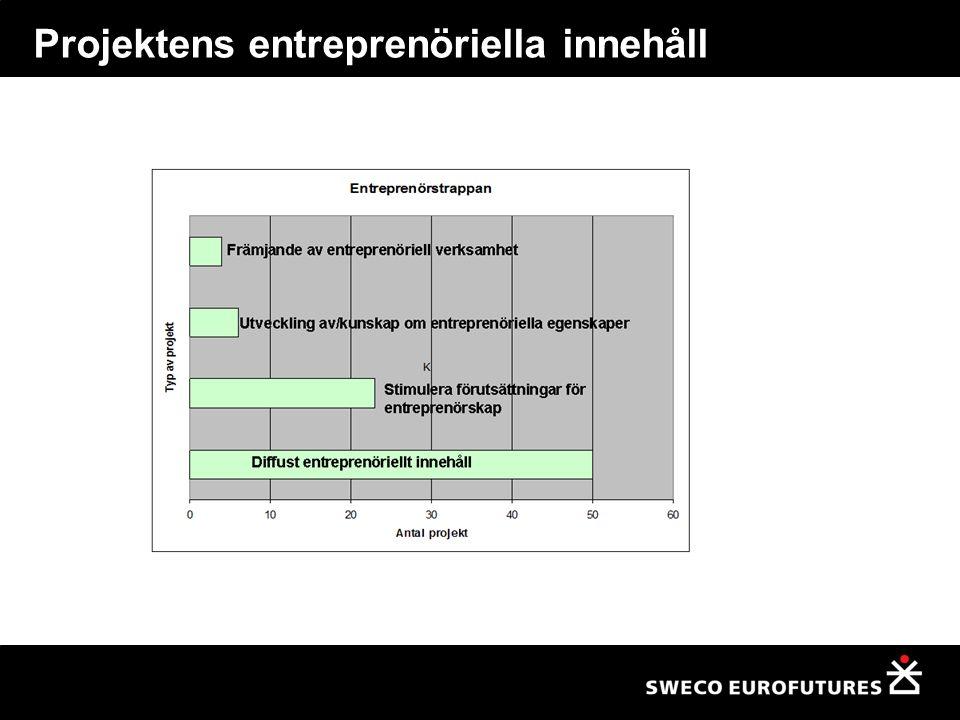 Projektens entreprenöriella innehåll