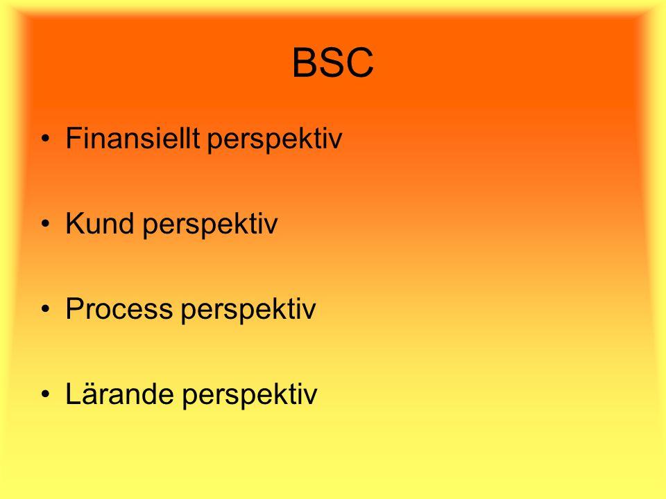 BSC Finansiellt perspektiv Kund perspektiv Process perspektiv Lärande perspektiv