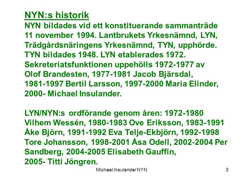 3 NYN:s historik NYN bildades vid ett konstituerande sammanträde 11 november 1994.