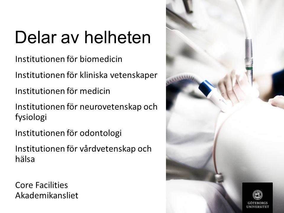 Delar av helheten Institutionen för biomedicin Institutionen för kliniska vetenskaper Institutionen för medicin Institutionen för neurovetenskap och fysiologi Institutionen för odontologi Institutionen för vårdvetenskap och hälsa Core Facilities Akademikansliet