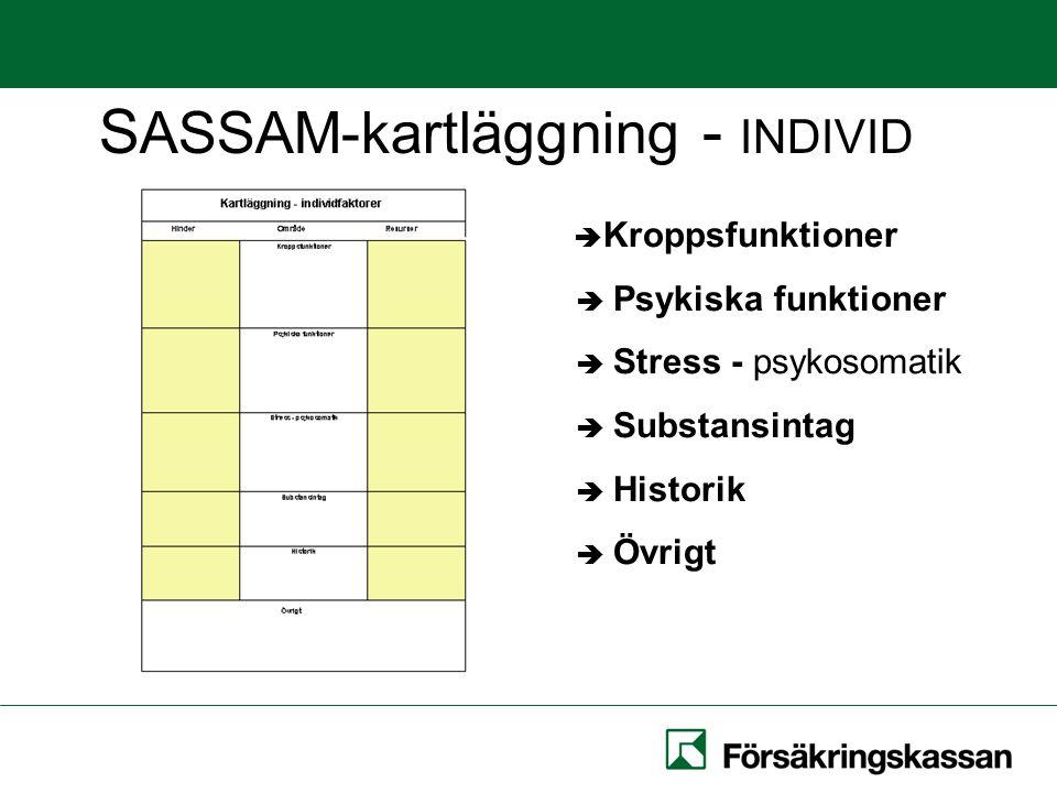 S ASSAM-kartläggning - INDIVID  Kroppsfunktioner  Psykiska funktioner  Stress - psykosomatik  Substansintag  Historik  Övrigt