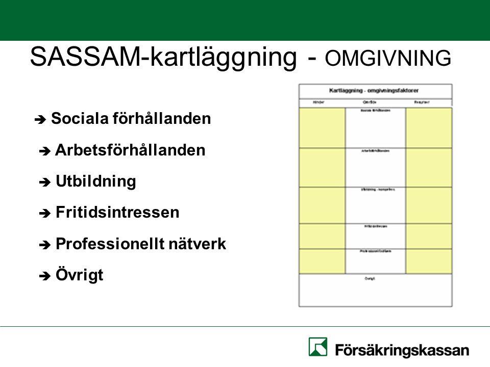 SASSAM-kartläggning - OMGIVNING  Sociala förhållanden  Arbetsförhållanden  Utbildning  Fritidsintressen  Professionellt nätverk  Övrigt