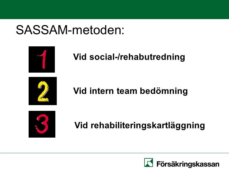 Användningsområden Vid social-/rehabutredning Vid intern team bedömning Vid rehabiliteringskartläggning SASSAM-metoden: