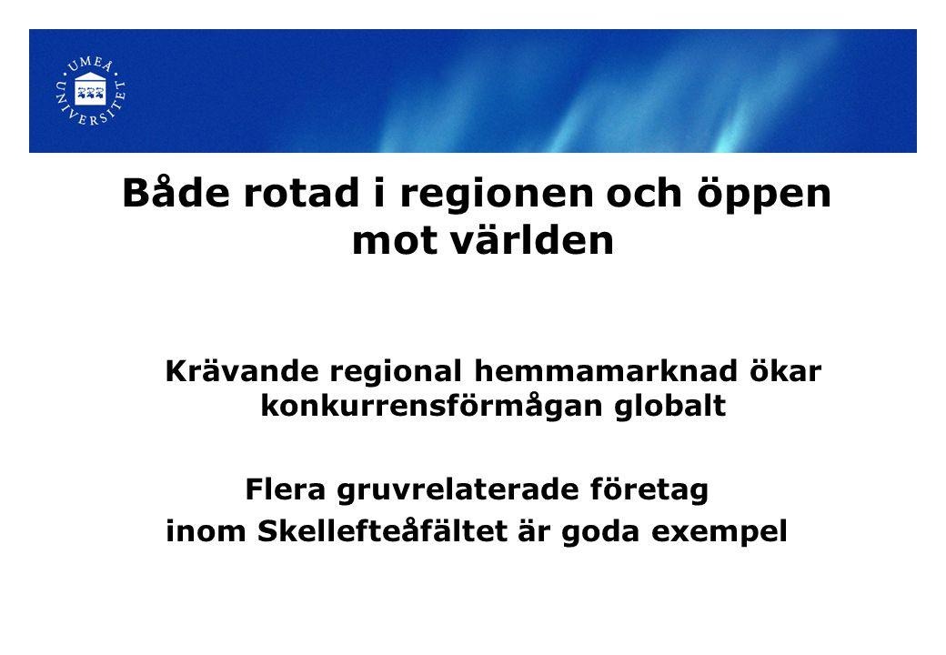 Både rotad i regionen och öppen mot världen Krävande regional hemmamarknad ökar konkurrensförmågan globalt Flera gruvrelaterade företag inom Skellefteåfältet är goda exempel