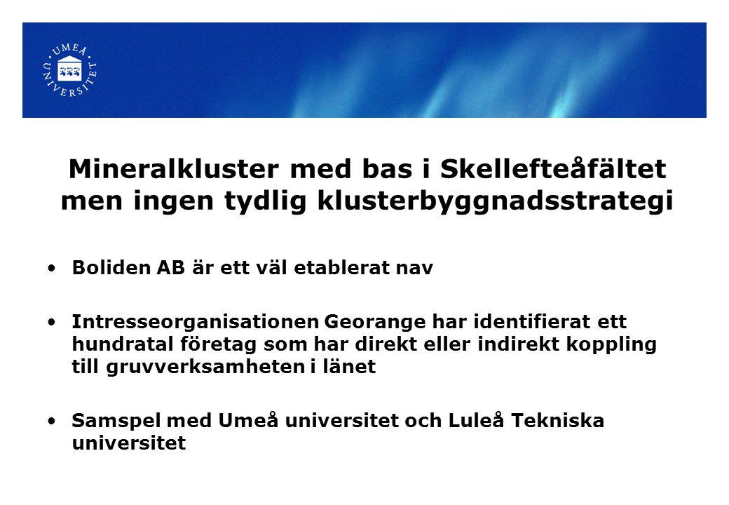 Mineralkluster med bas i Skellefteåfältet men ingen tydlig klusterbyggnadsstrategi Boliden AB är ett väl etablerat nav Intresseorganisationen Georange har identifierat ett hundratal företag som har direkt eller indirekt koppling till gruvverksamheten i länet Samspel med Umeå universitet och Luleå Tekniska universitet