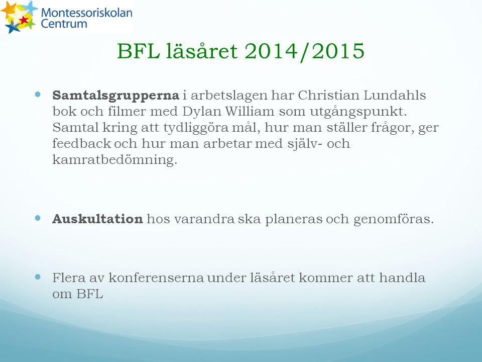 BFL läsåret 2014/2015 Samtalsgrupperna i arbetslagen har Christian Lundahls bok och filmer med Dylan William som utgångspunkt.