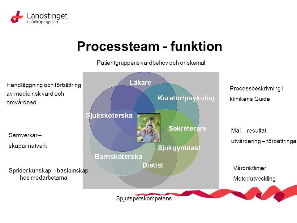 Processteam - funktion Patientgruppens vårdbehov och önskemål Processbeskrivning i klinikens Guide Mål – resultat utvärdering – förbättringar Vårdrikt