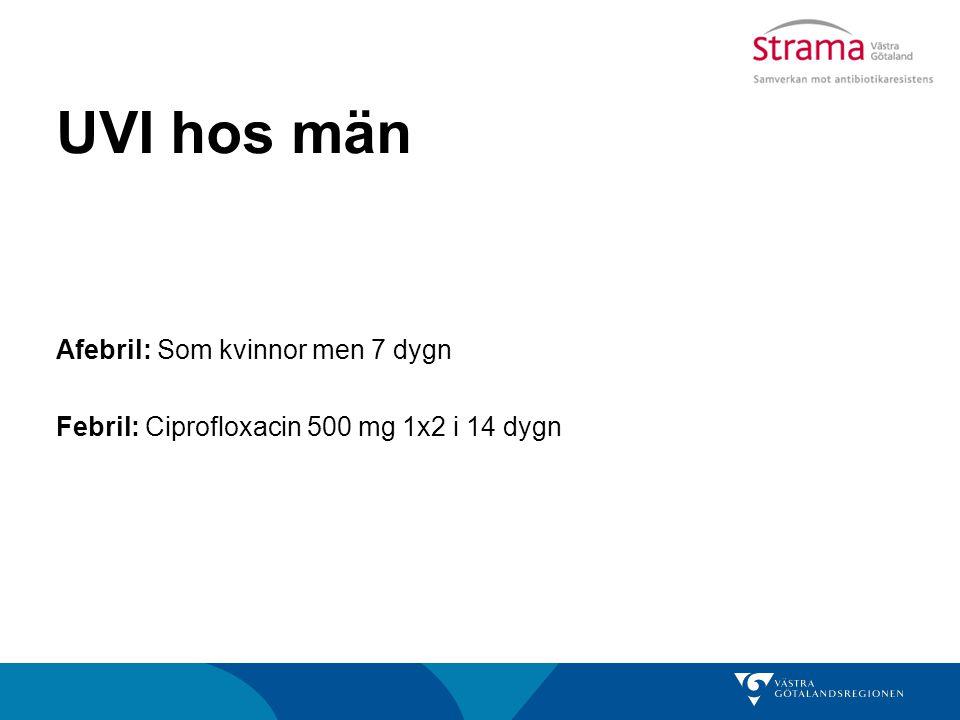 UVI hos män Afebril: Som kvinnor men 7 dygn Febril: Ciprofloxacin 500 mg 1x2 i 14 dygn