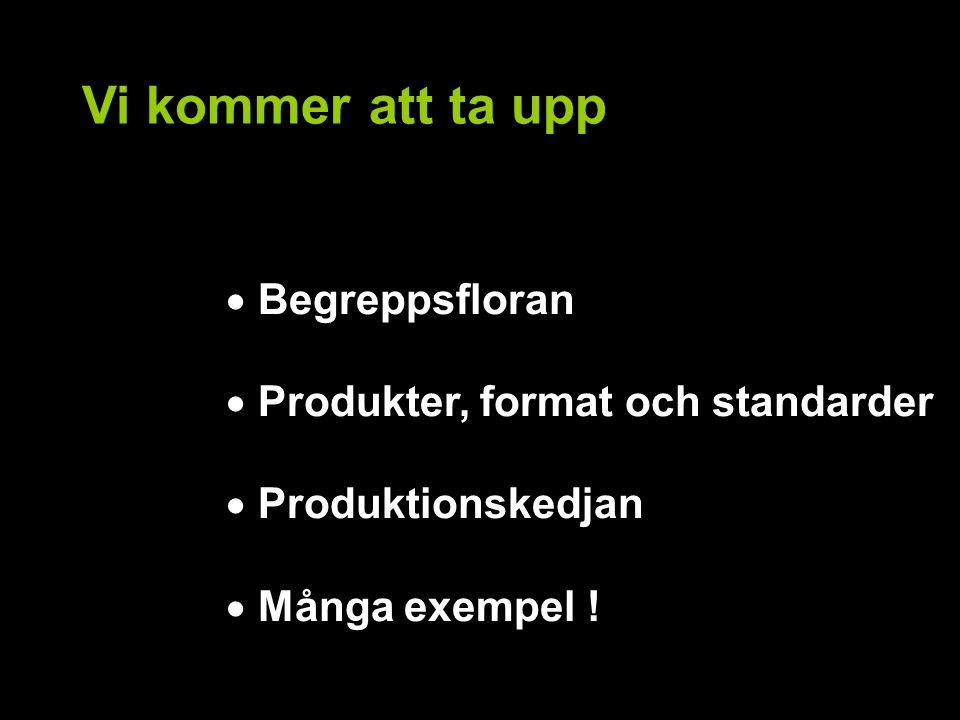 Vi kommer att ta upp  Begreppsfloran  Produkter, format och standarder  Produktionskedjan  Många exempel !