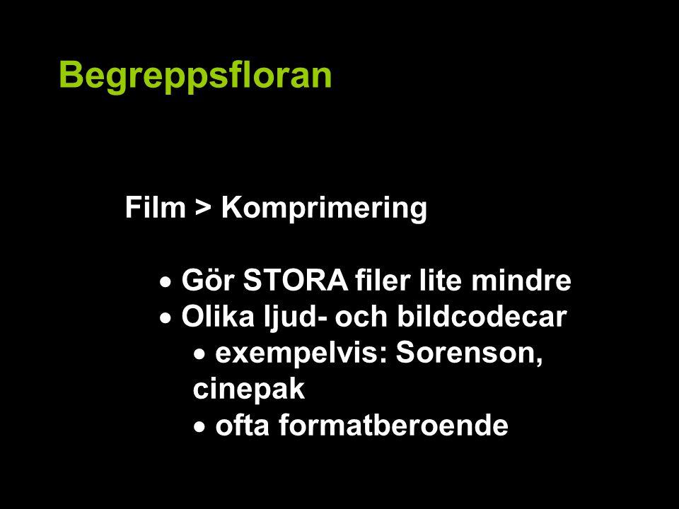Begreppsfloran Film > Komprimering  Gör STORA filer lite mindre  Olika ljud- och bildcodecar  exempelvis: Sorenson, cinepak  ofta formatberoende
