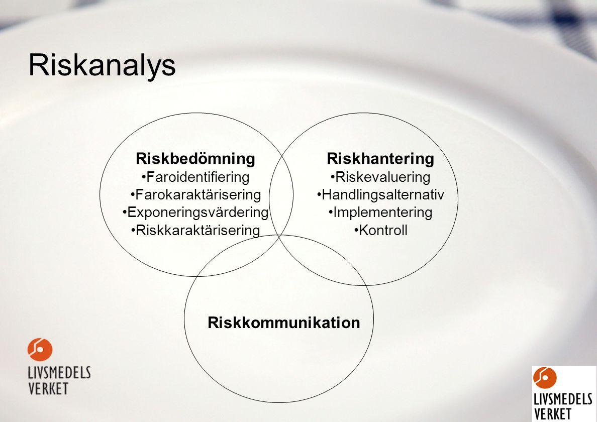 Riskanalys Riskbedömning Faroidentifiering Farokaraktärisering Exponeringsvärdering Riskkaraktärisering Riskhantering Riskevaluering Handlingsalternativ Implementering Kontroll Riskkommunikation
