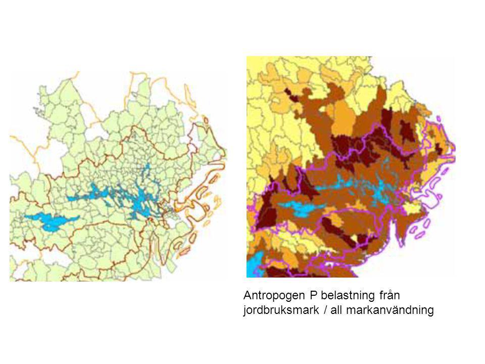 Antropogen P belastning från jordbruksmark / all markanvändning
