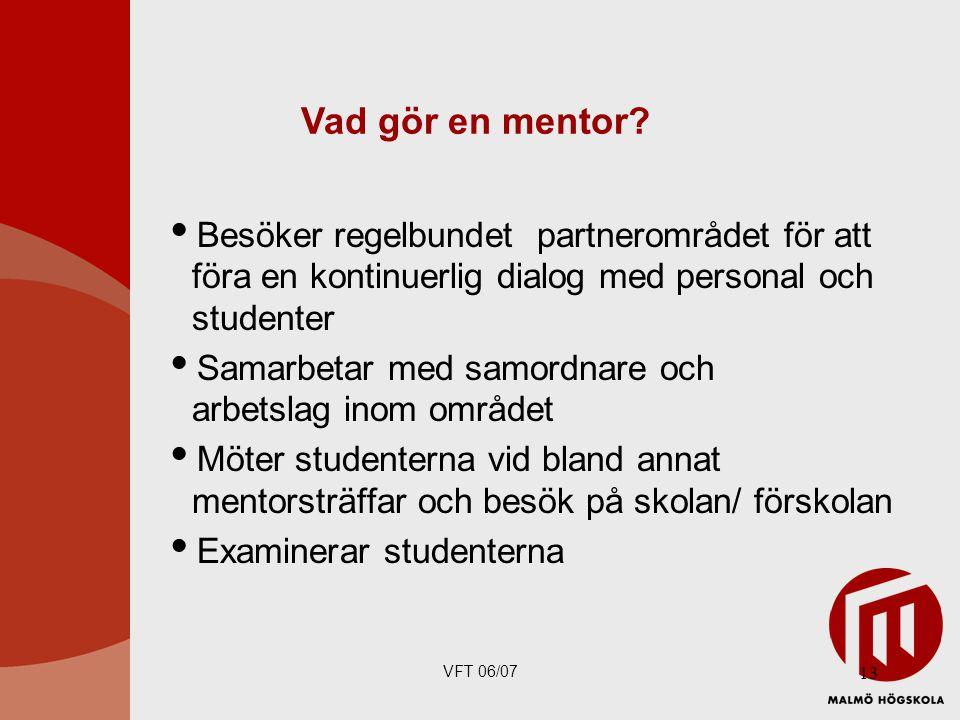 VFT 06/07 13 Vad gör en mentor.