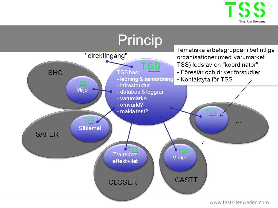 Princip TSS bas: - ledning & samordning - infrastruktur - databas & loggrar - varumärke - omvärld? - mäkla test? TSS bas: - ledning & samordning - inf