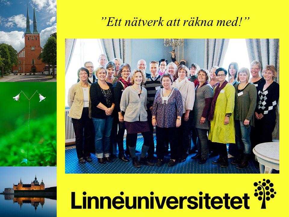 Matematikutveckling i Olofströms kommun 2003-2012 Mikael Gustafsson & Camilla Stridh Ett nätverk att räkna med!
