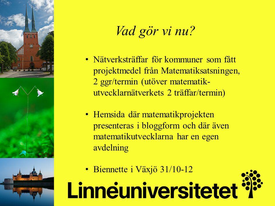 Matematikutveckling i Olofströms kommun 2003-2012 Mikael Gustafsson & Camilla Stridh Vad gör vi nu? Nätverksträffar för kommuner som fått projektmedel