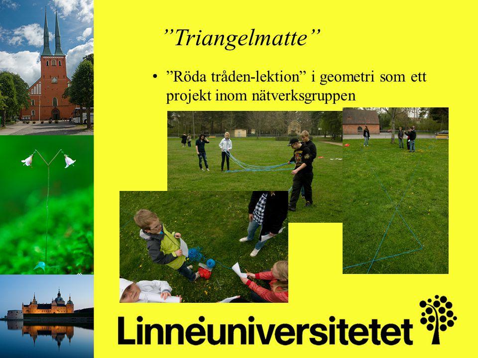 """Matematikutveckling i Olofströms kommun 2003-2012 Mikael Gustafsson & Camilla Stridh """"Triangelmatte"""" """"Röda tråden-lektion"""" i geometri som ett projekt"""