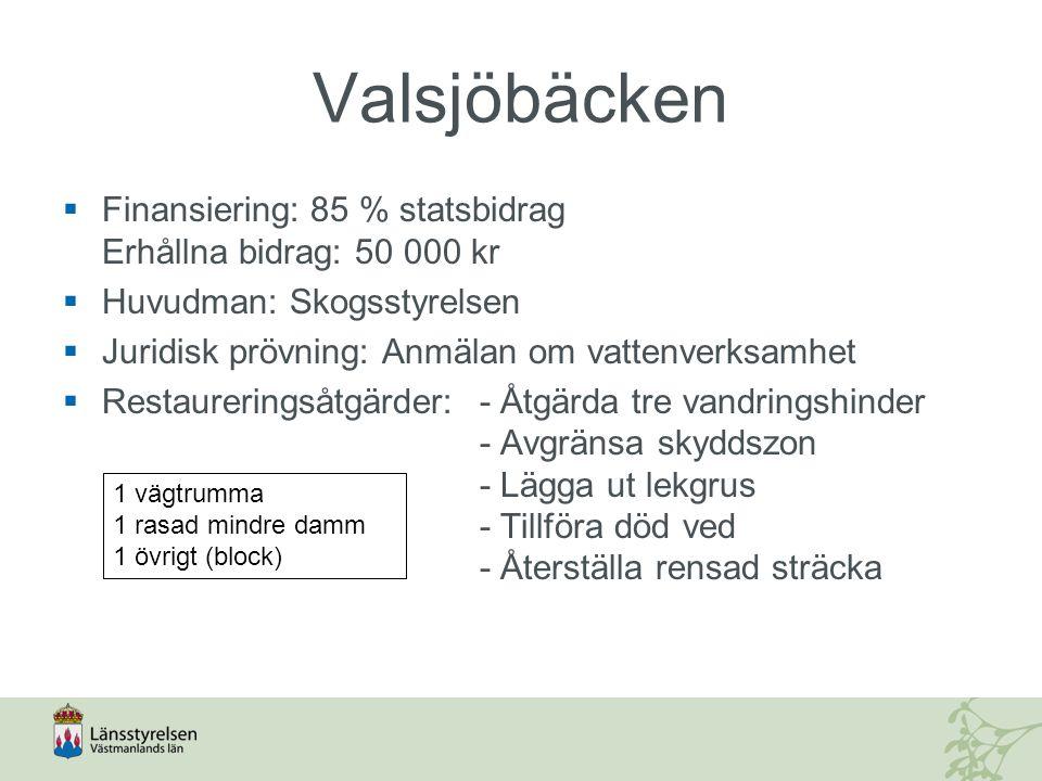 Valsjöbäcken  Finansiering: 85 % statsbidrag Erhållna bidrag: 50 000 kr  Huvudman: Skogsstyrelsen  Juridisk prövning: Anmälan om vattenverksamhet 