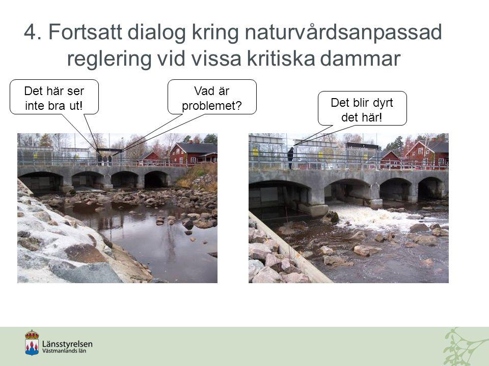 4. Fortsatt dialog kring naturvårdsanpassad reglering vid vissa kritiska dammar Det blir dyrt det här! Det här ser inte bra ut! Vad är problemet?