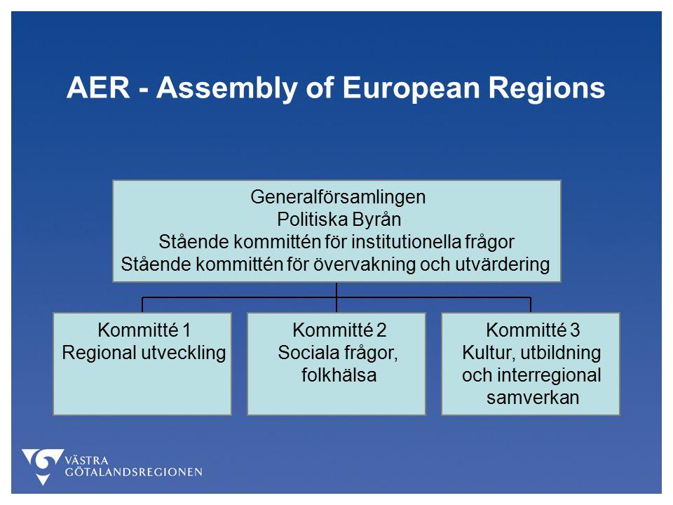 AER - Assembly of European Regions Kommitté 1 Regional utveckling Kommitté 2 Sociala frågor, folkhälsa Kommitté 3 Kultur, utbildning och interregional samverkan Generalförsamlingen Politiska Byrån Stående kommittén för institutionella frågor Stående kommittén för övervakning och utvärdering