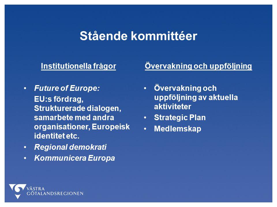 Stående kommittéer Institutionella frågor Future of Europe: EU:s fördrag, Strukturerade dialogen, samarbete med andra organisationer, Europeisk identitet etc.