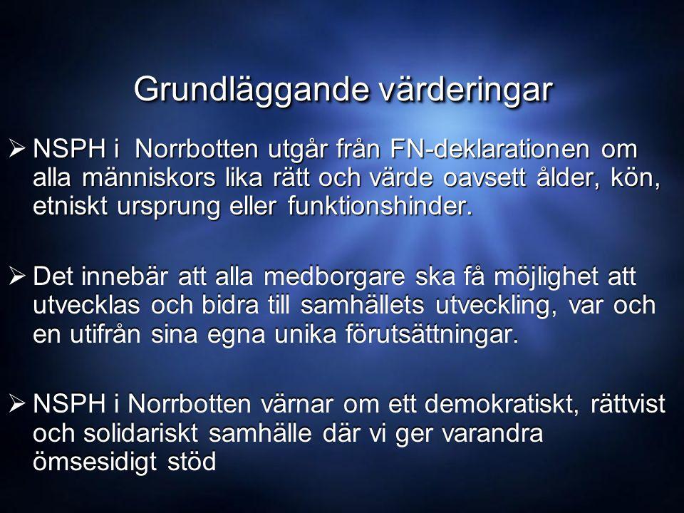 Grundläggande värderingar  NSPH i Norrbotten utgår från FN-deklarationen om alla människors lika rätt och värde oavsett ålder, kön, etniskt ursprung eller funktionshinder.
