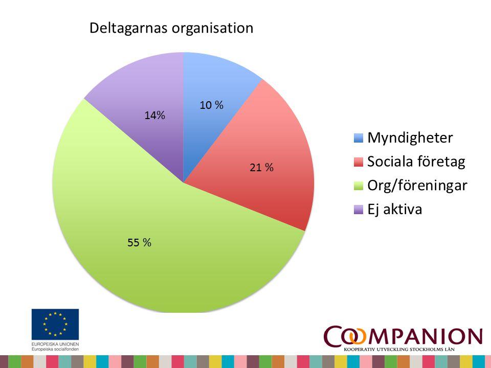 Deltagarnas organisation 14% 10 % 21 % 55 %