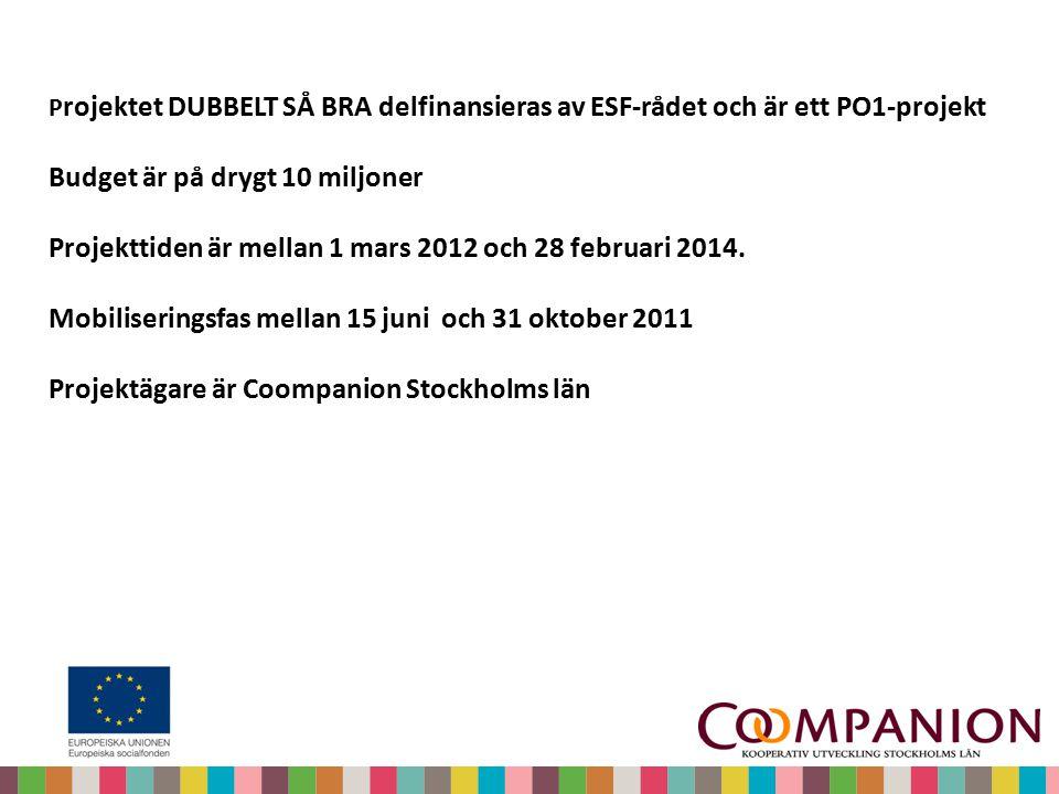 P rojektet DUBBELT SÅ BRA delfinansieras av ESF-rådet och är ett PO1-projekt Budget är på drygt 10 miljoner Projekttiden är mellan 1 mars 2012 och 28 februari 2014.
