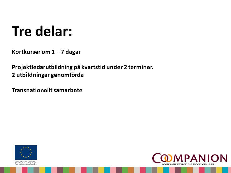 Tre delar: Kortkurser om 1 – 7 dagar Projektledarutbildning på kvartstid under 2 terminer. 2 utbildningar genomförda Transnationellt samarbete