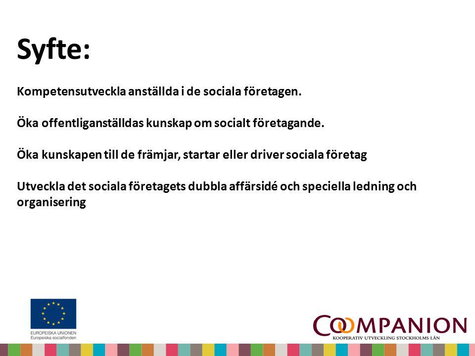 Syfte: Kompetensutveckla anställda i de sociala företagen. Öka offentliganställdas kunskap om socialt företagande. Öka kunskapen till de främjar, star