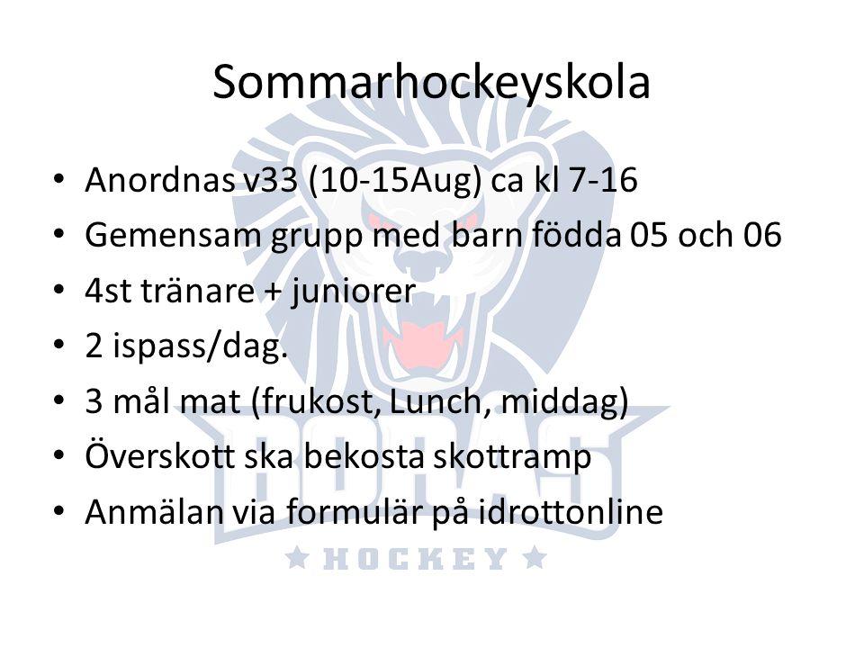 Sommarhockeyskola Anordnas v33 (10-15Aug) ca kl 7-16 Gemensam grupp med barn födda 05 och 06 4st tränare + juniorer 2 ispass/dag. 3 mål mat (frukost,