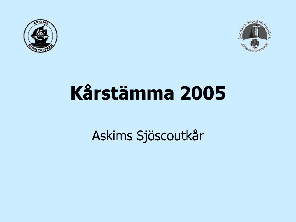 Ekonomi Tillbaka på plus igen –Investeringar var små under 2004 (inköpsstopp under hösten) men kommer att öka under 2005 –Fick ett stort bidrag från Stiftelsen Göteborgs Barnhus på 50.000 kr –Fick sponsring på 10.000 kr –Vi behöver nya inkomster