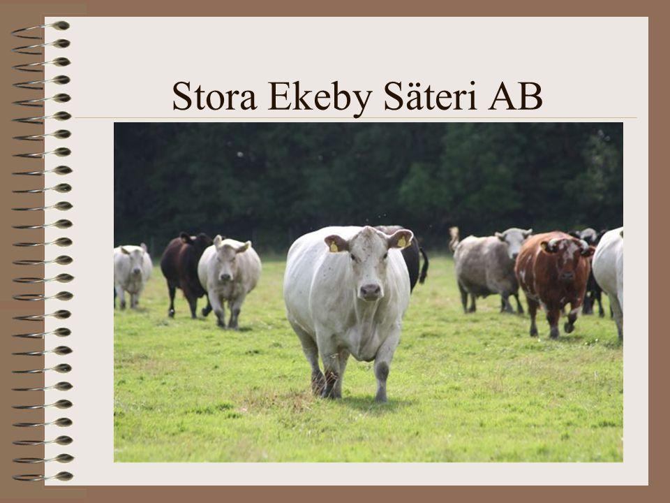Stora Ekeby Säteri AB