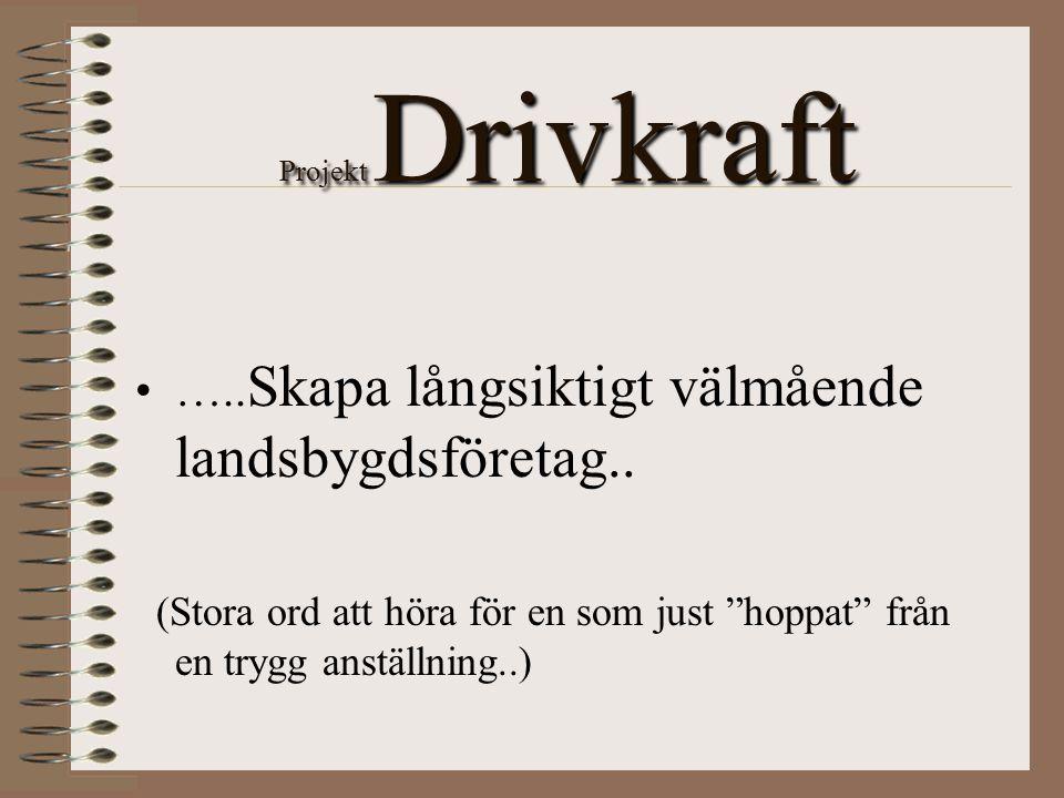 """Projekt Drivkraft ….. Skapa långsiktigt välmående landsbygdsföretag.. (Stora ord att höra för en som just """"hoppat"""" från en trygg anställning..)"""