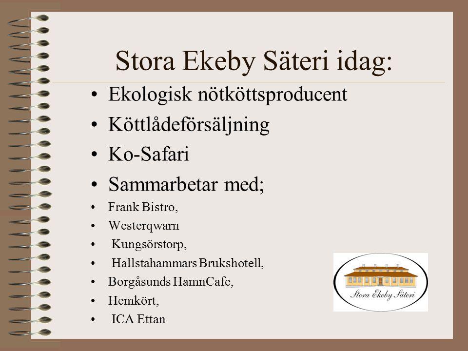 Stora Ekeby Säteri idag: Ekologisk nötköttsproducent Köttlådeförsäljning Ko-Safari Sammarbetar med; Frank Bistro, Westerqwarn Kungsörstorp, Hallstaham