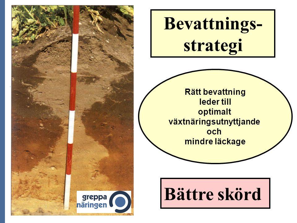 Bevattnings- strategi Rätt bevattning leder till optimalt växtnäringsutnyttjande och mindre läckage Bättre skörd