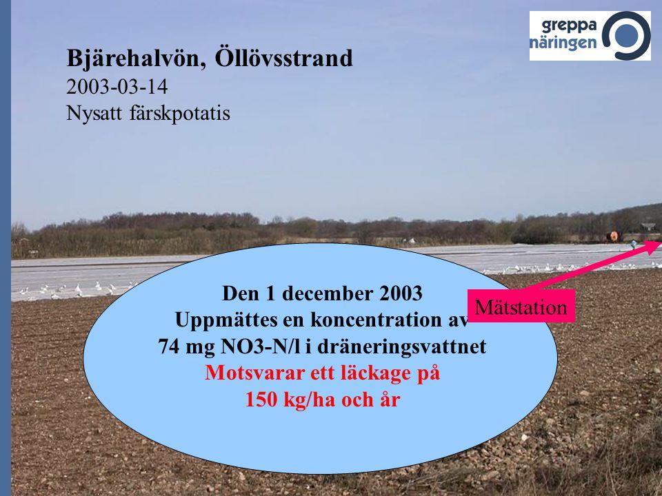 Bjärehalvön, Öllövsstrand 2003-03-14 Nysatt färskpotatis Den 1 december 2003 Uppmättes en koncentration av 74 mg NO3-N/l i dräneringsvattnet Motsvarar ett läckage på 150 kg/ha och år Mätstation