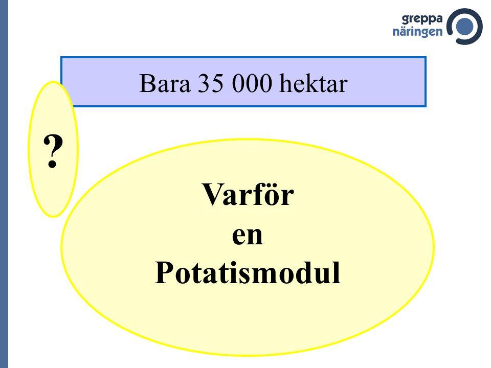 Varför en Potatismodul Bara 35 000 hektar ?