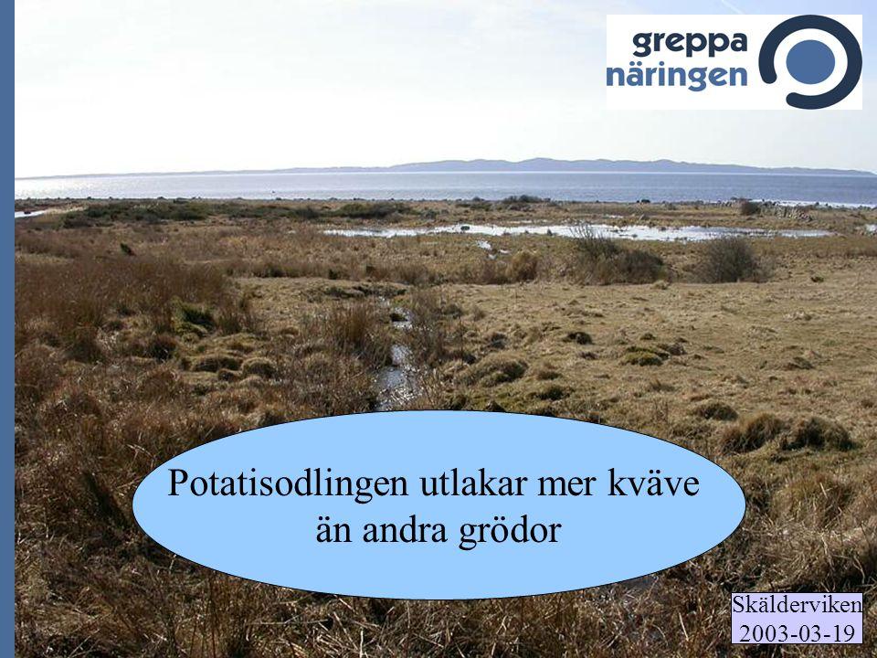Skälderviken 2003-03-19 Potatisodlingen utlakar mer kväve än andra grödor