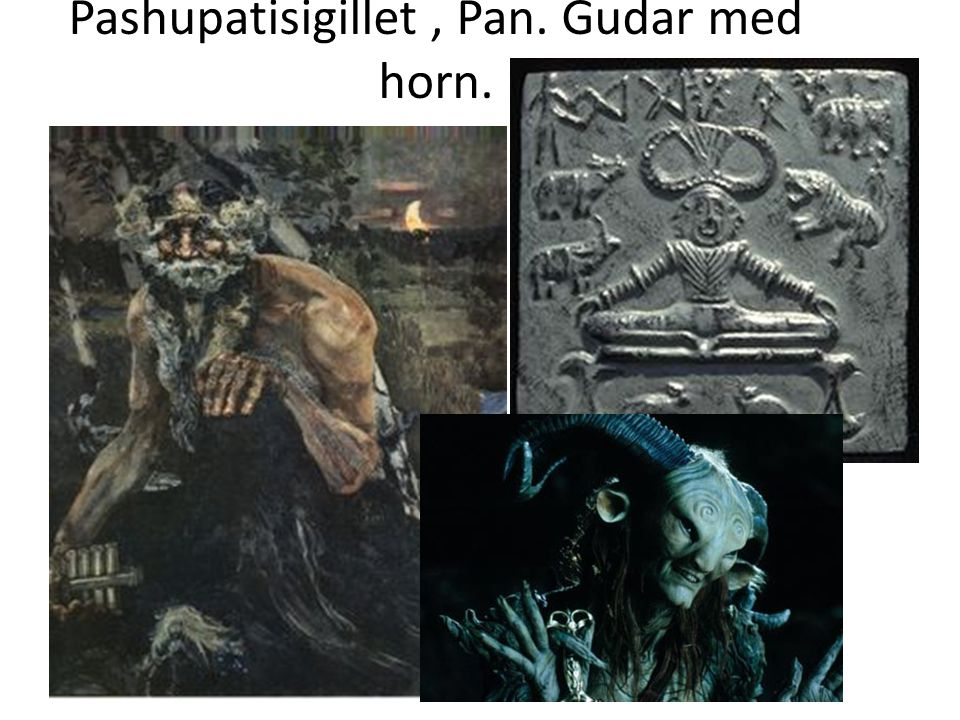 Shiva pashupati förstör och återskapar världen. En av de tre största gudarna.