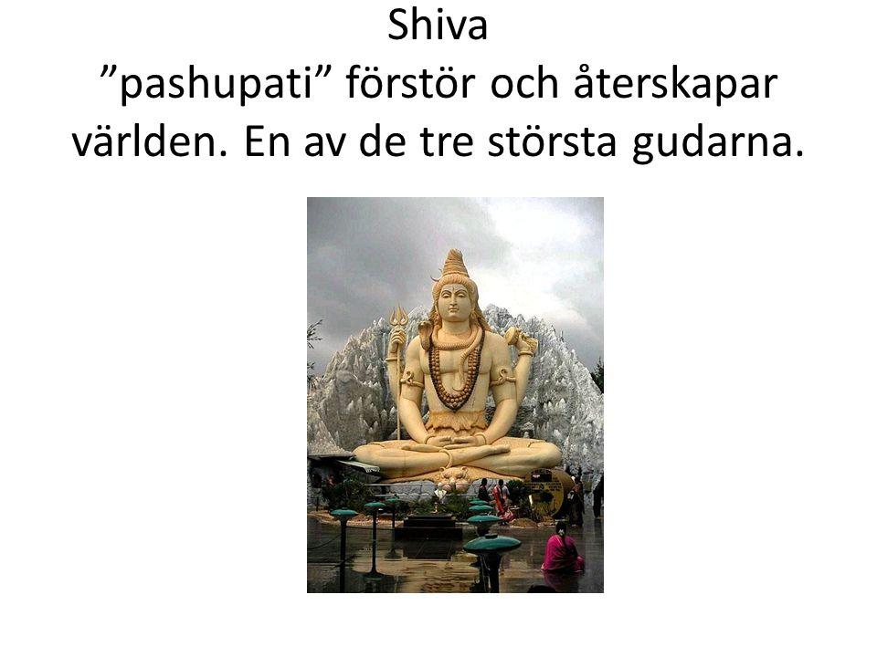 """Shiva """"pashupati"""" förstör och återskapar världen. En av de tre största gudarna."""