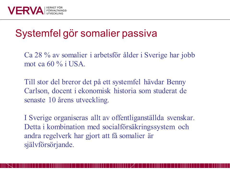 Systemfel gör somalier passiva Ca 28 % av somalier i arbetsför ålder i Sverige har jobb mot ca 60 % i USA.