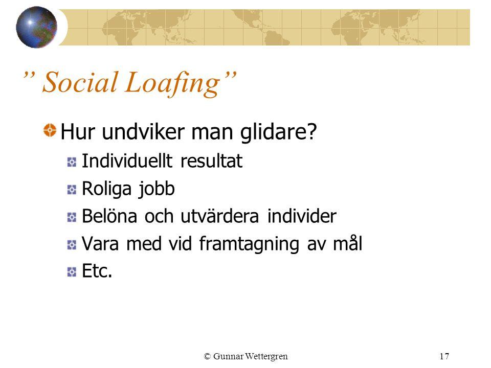 """"""" Social Loafing"""" Hur undviker man glidare? Individuellt resultat Roliga jobb Belöna och utvärdera individer Vara med vid framtagning av mål Etc. © Gu"""