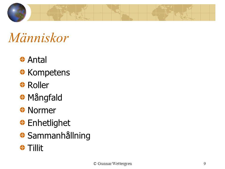 Människor Antal Kompetens Roller Mångfald Normer Enhetlighet Sammanhållning Tillit © Gunnar Wettergren9