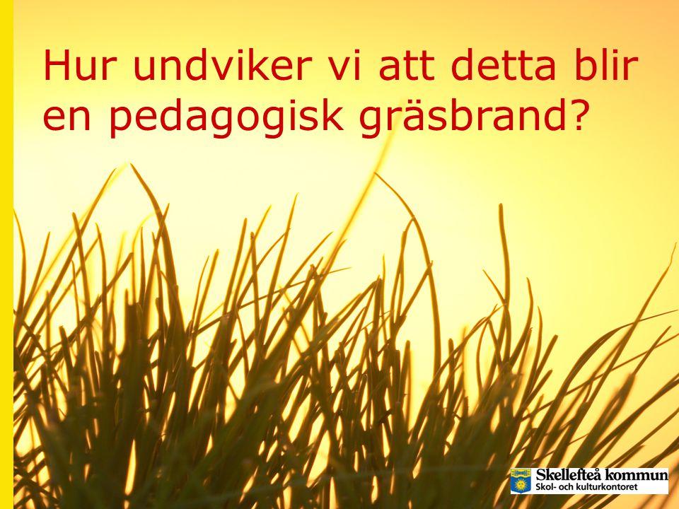 Hur undviker vi att detta blir en pedagogisk gräsbrand?